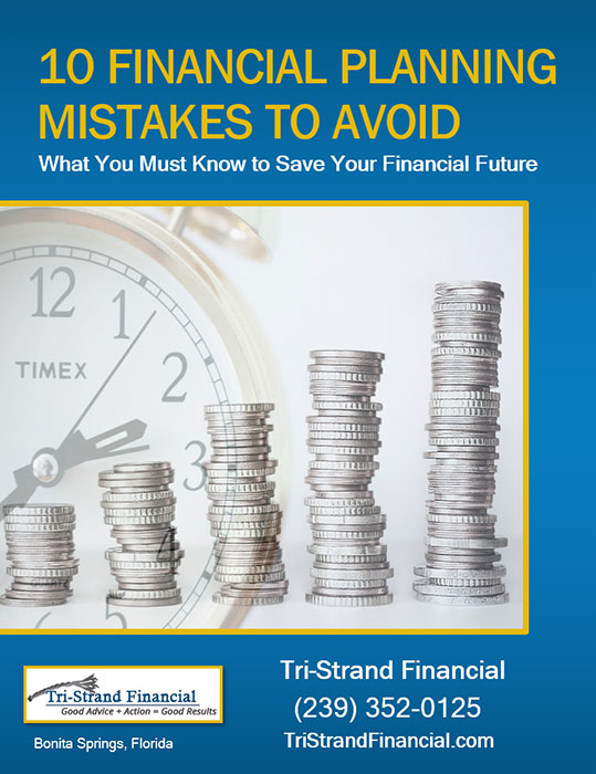 Free Report Cover for Financial Project